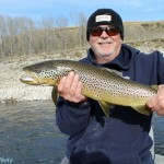 Massive Bow River Brown Trout