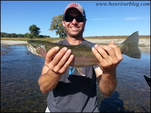 Guided float fishing the bow river-2014