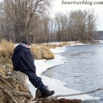 watching-for-bow-river-rising-trout