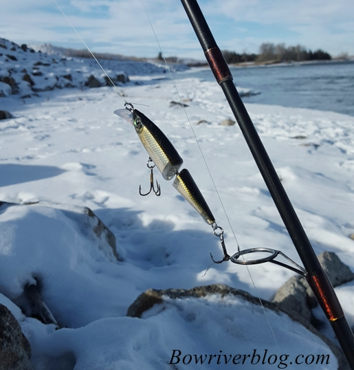 bow-river-winter-fishing