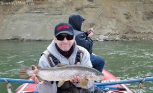 brown-trout-of-the-bow-river