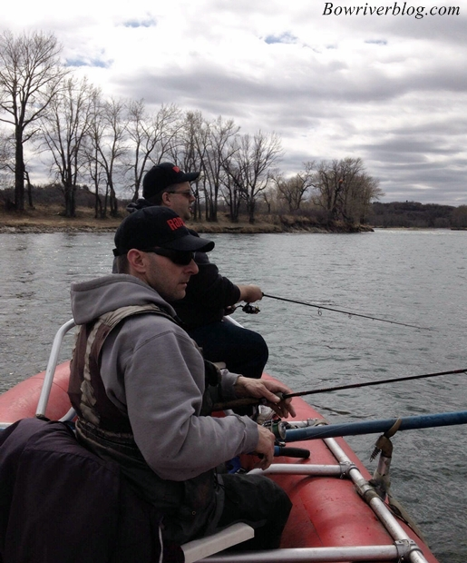 float-fishing-the-lower-bow-river