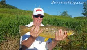 big-bow-river-brown-trout-2016