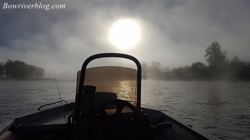 fall fog on the bow river