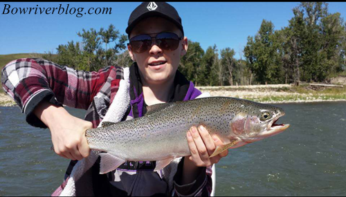 bow-river-rainbow-trout-fishing