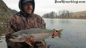 huge rainbow caught on the bow river