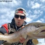 trophy brown trout fishing bow river alberta canada