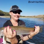 rainbow trout fishing Bow River