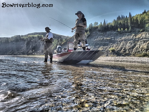 spin-fishing-the-bow-river-2017