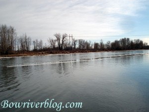 winter-fishing-tips-for-the-bow-river