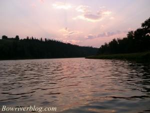 bow-river-summer-time-trout-fishing