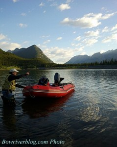 fishing for bull trout on the lower kananaskis lake