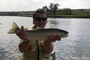 A massive stream trout