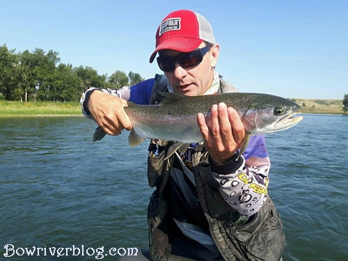 Guided spin fishing trips bow river Calgary