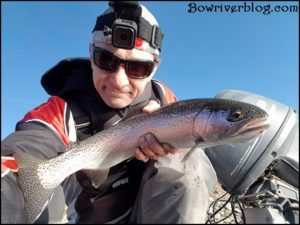 rainbow trout fishing the bow river with lures